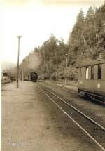 vor dem Hochwasser/78733/einfahrt-in-den-endbahnhof-kipsdorferzgebirge-dr Einfahrt in den Endbahnhof Kipsdorf/Erzgebirge, DR vor 1989