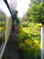 Strecke/120845/unterwegs-mit-der-zittauer-schmalspurbahn Unterwegs mit der Zittauer Schmalspurbahn